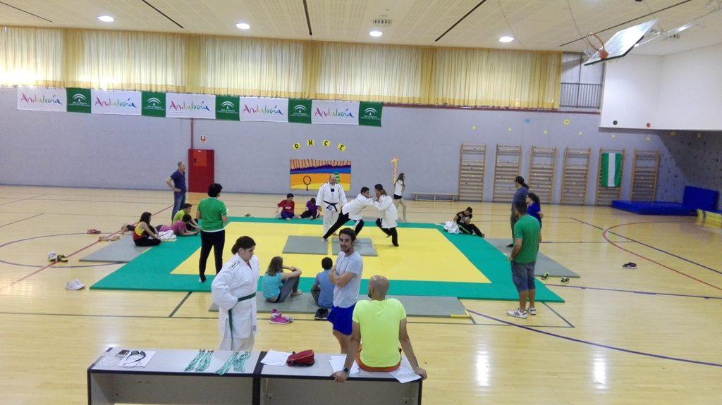 Pruebas de Judo