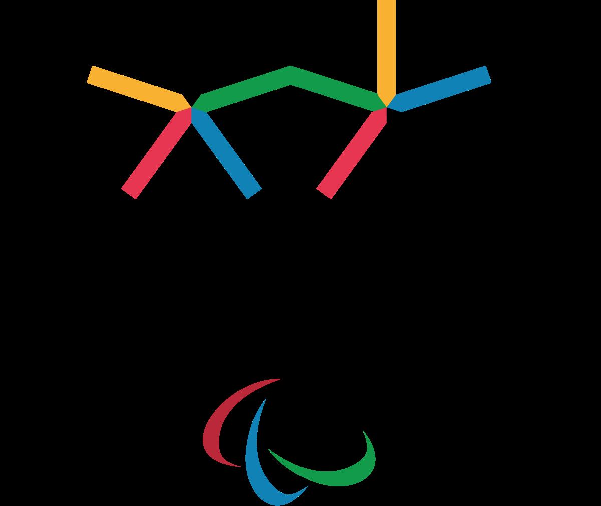Imagen - Comité Paralímpico Español