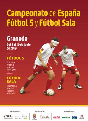 Cartel oficial del campeonato de Granada